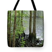 Waccamaw View II Tote Bag
