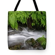 Wahkeena Falls One Tote Bag