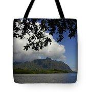 Waiahole Beach Park Tote Bag by Mark Gilman