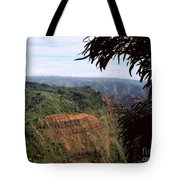 Waimea Canyon And Marshes Tote Bag