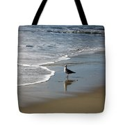 Waiting For Lunch On Shore Tote Bag