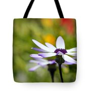 Waiting Tote Bag by Heidi Smith