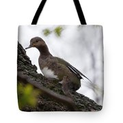 Waiting Out The Rain Tote Bag