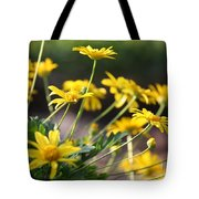 Waking Up To Sunshine Tote Bag