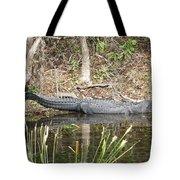 Wakulla Springs Alligator Tote Bag