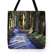 Walk On A Cold Autumn Day Tote Bag
