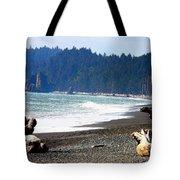 Walk On La Push Beach Tote Bag