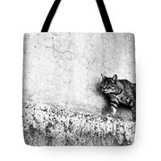 Walking On The Wall Tote Bag