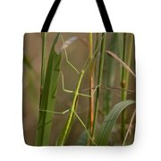Walking Stick Insect Tote Bag