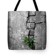 Wall Ferns Tote Bag
