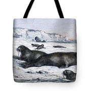 Walruses On Ice Field Tote Bag