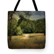 Wandering Path I Tote Bag