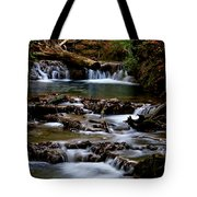 Warm Springs Tote Bag