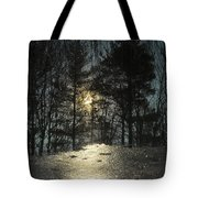 Warmth Above Icy Reflections Tote Bag