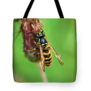 Wasp On Plant Tote Bag