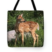 Watching For Mom Tote Bag