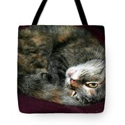 Watching On The Sly Tote Bag