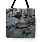 Water And Woods Tote Bag