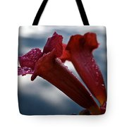 Water Beaded Trumpets Tote Bag