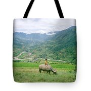 Water Buffalo Boy Tote Bag