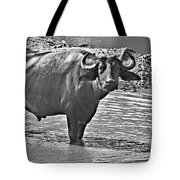 Water Buffalo In Black And White Tote Bag