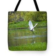 Water Dancer Tote Bag