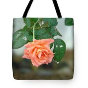 Water Dripping From A Peach Rose After Rain Tote Bag