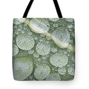 Water Droplets On Leaf, Annapolis Tote Bag