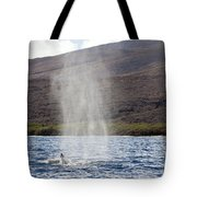 Water From A Whale Blowhole Tote Bag