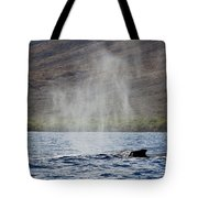 Water From A Whale Blowhole II Tote Bag