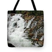 Water In Motion Glen Alpine Falls Tote Bag