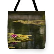 Water Lilies And Lily Pads Tote Bag