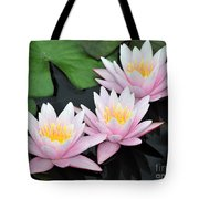 water lily 88 Sunny Pink Water Lily with Reflection Tote Bag