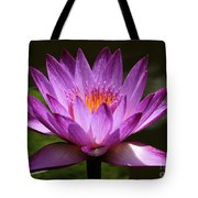Water Lily Blossom Tote Bag