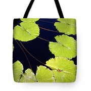 Water Lily Pads And Bloom Tote Bag