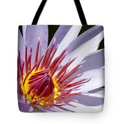 Water Lily Soaking Up The Sun Light Tote Bag