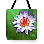 Water Lily Study Tote Bag