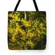 Water Reflection Abstract Autumn 1 G Tote Bag