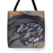 Water Sculpted Rock Bed, Kicking Horse Tote Bag