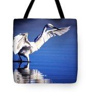 Waterdancer Tote Bag