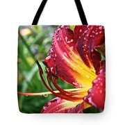 Watered Tote Bag