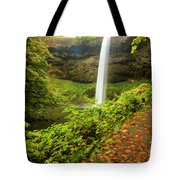 Waterfall Along The Trail Tote Bag