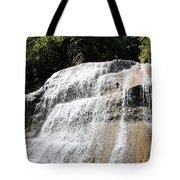 Waterfall At Treman State Park Ny Tote Bag