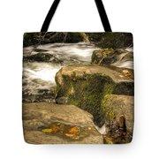 Waterfall In Fall Tote Bag