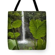 Waterfall In Lowland Tropical Rainforest Tote Bag