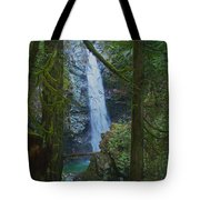 Waterfall In The Woods Tote Bag
