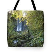 Waterfall Of Vaucoux. Puy De Dome. Auvergne. France Tote Bag