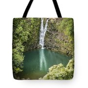 Waterfall Reflections Tote Bag