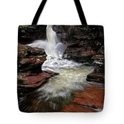 Waterfall Ricketts Glen Tote Bag