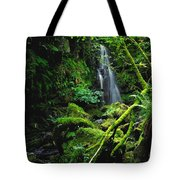 Waterfall, Sloughan Glen, Co Tyrone Tote Bag